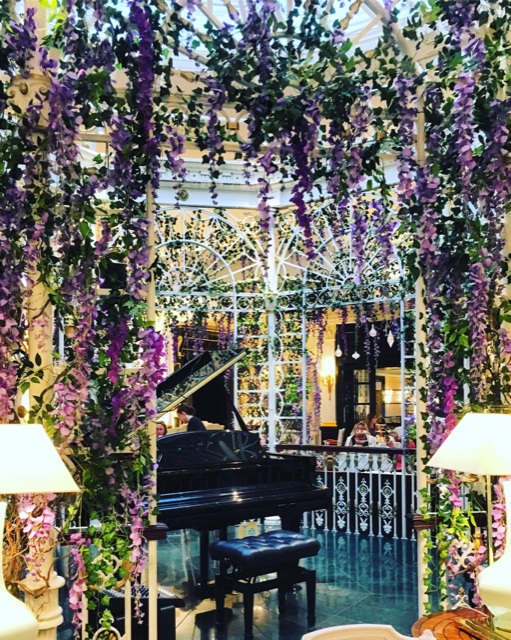 Wisteria in the Savoy