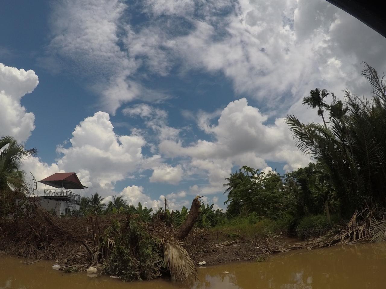 Mekong Delta riverbank
