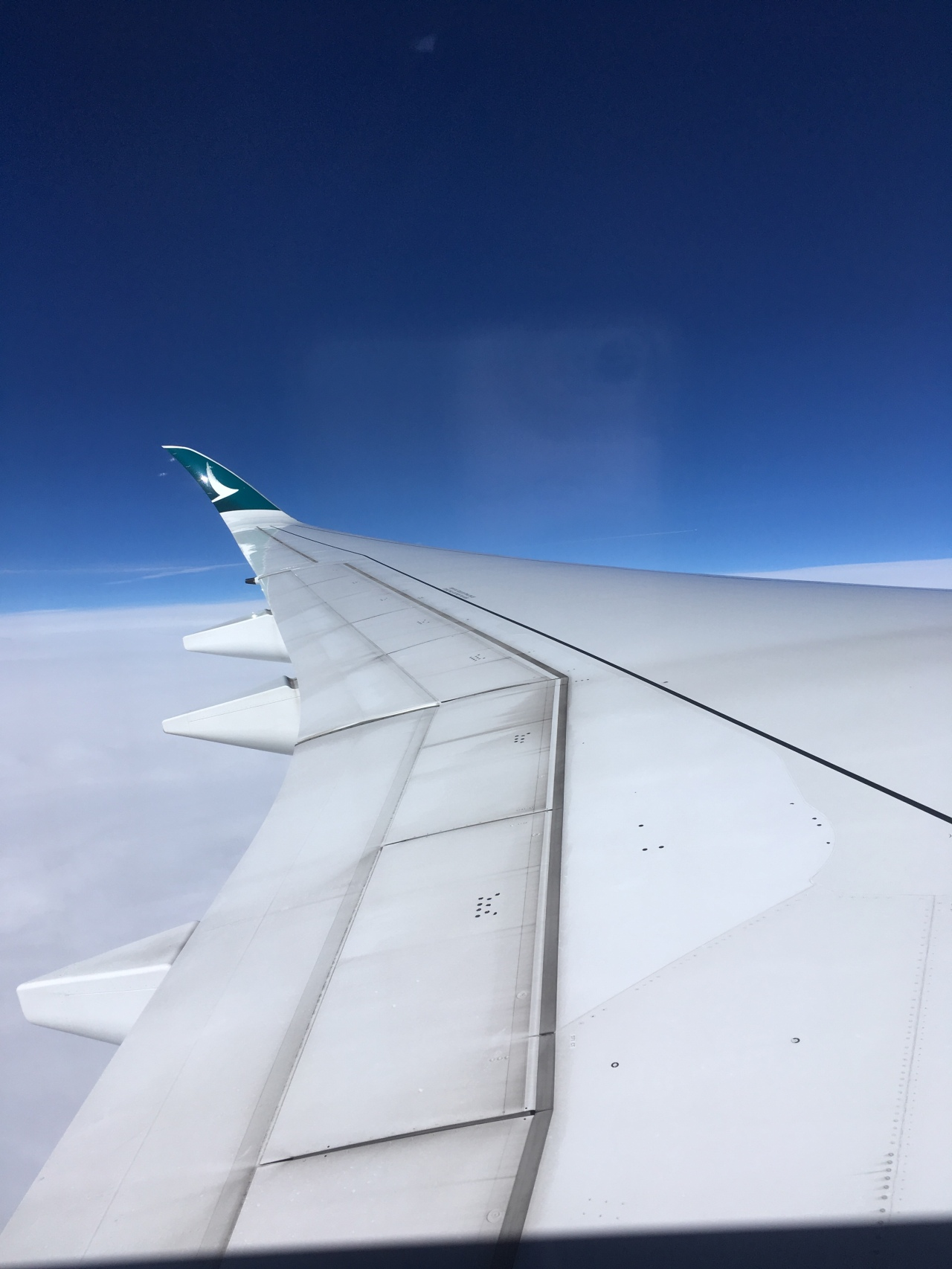 Cathay Pacific plane wing