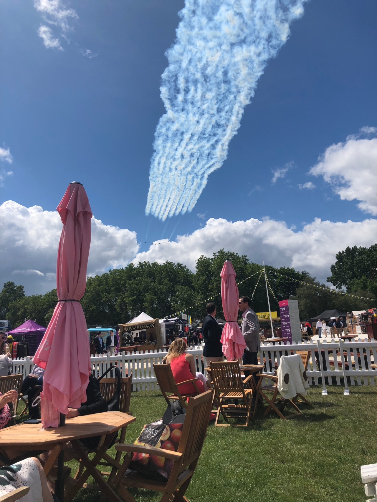 The red arrows flying over polo in the park