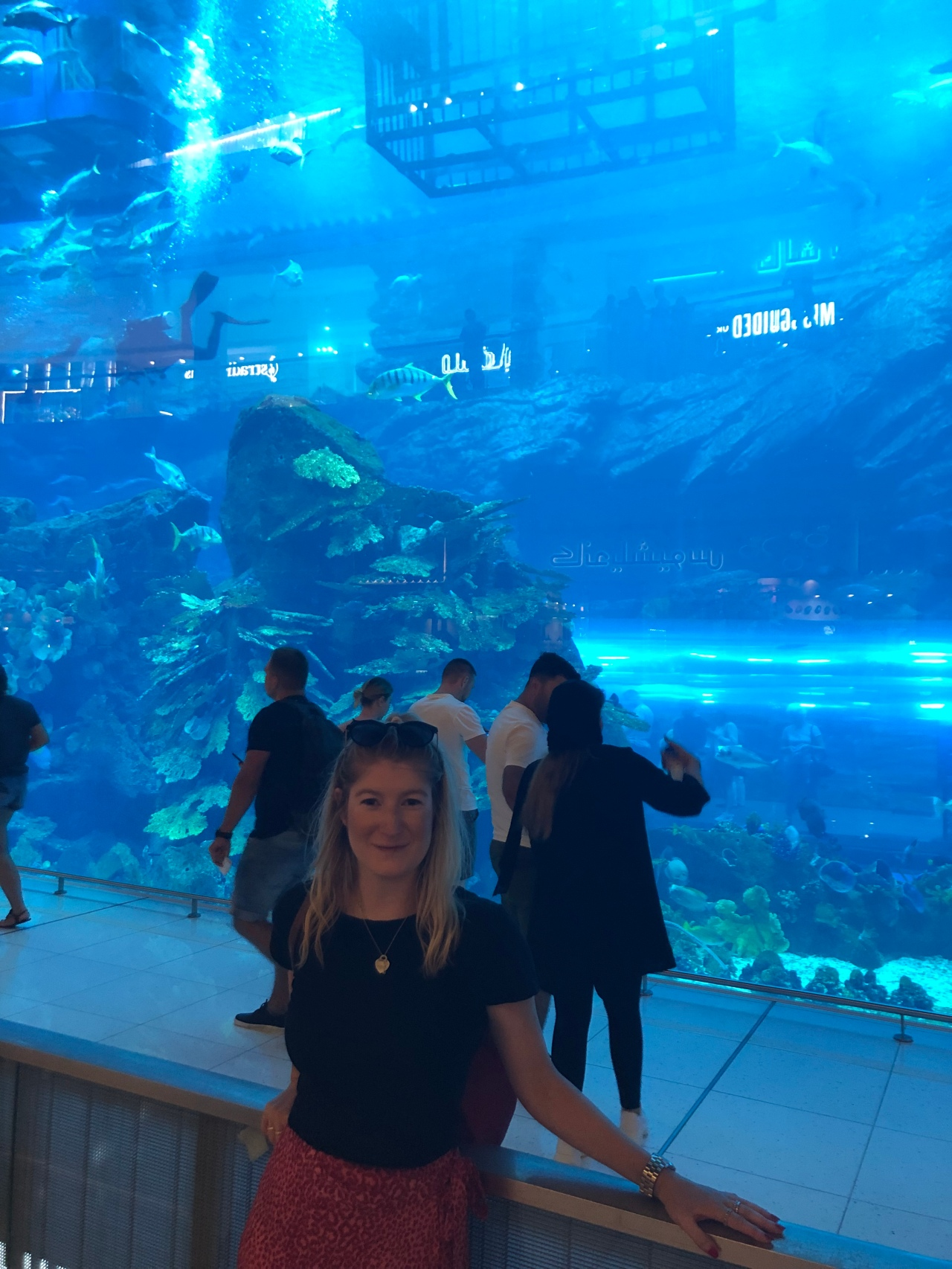 Diving in Dubai Mall aquarium