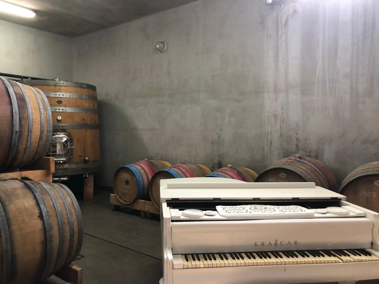 Trapan wine cellar piano